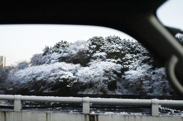 豪雪.jpgのサムネール画像